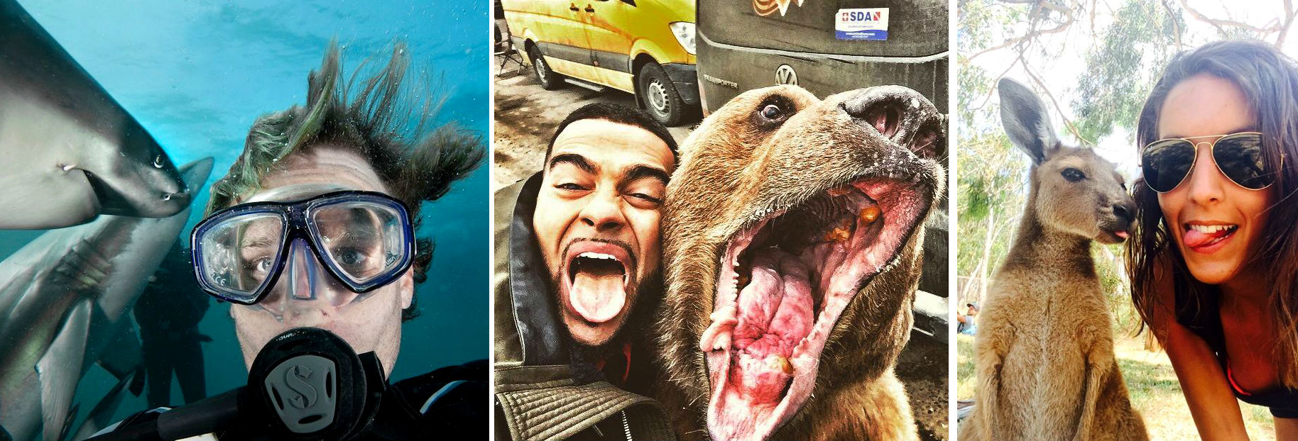 Snapping Selfies with Wild Animals Is a New Trend 1