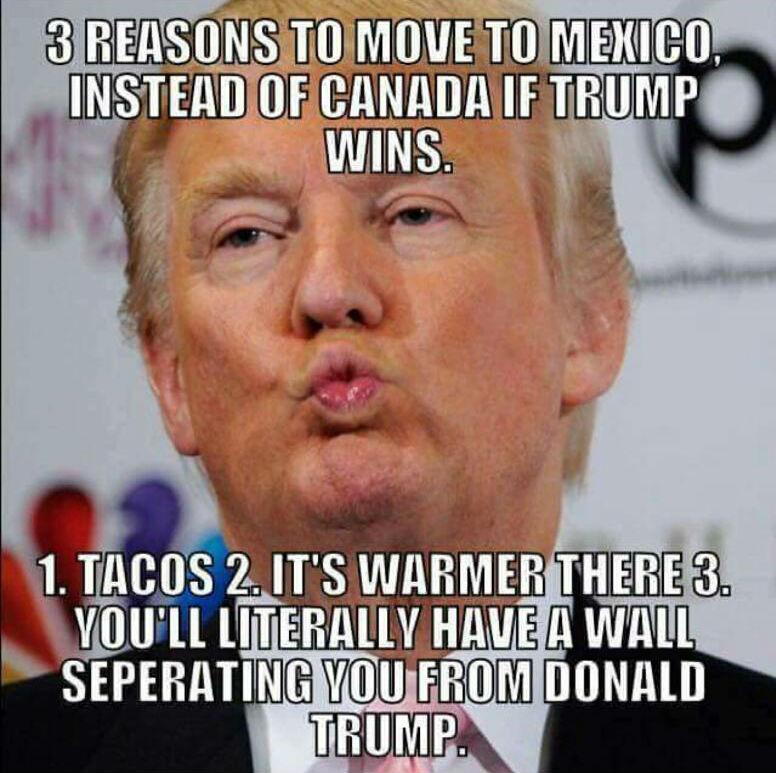 Funny Donald Trump Wall Memes : Anti trump libtard memes