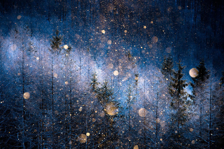 sony-world-photography-01-diamond-dust
