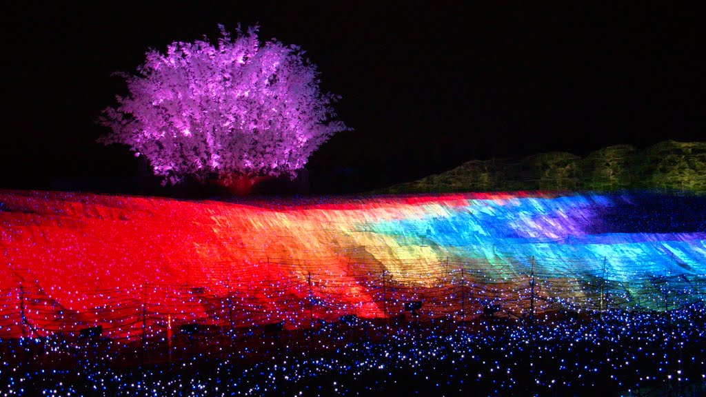 Japan's Glimmering Tunnel of Lights — Spectacular Winter Illuminations 11