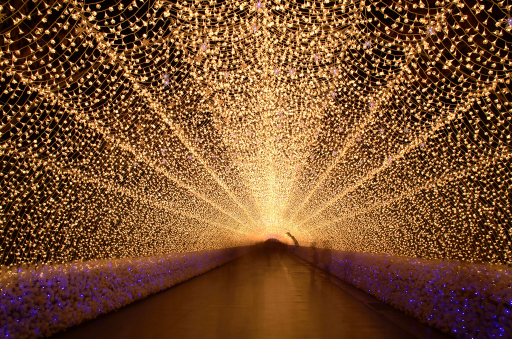 Japan's Glimmering Tunnel of Lights — Spectacular Winter Illuminations 3