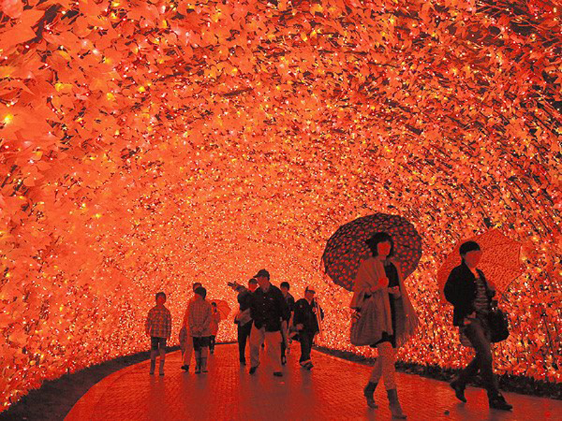 Japan's Glimmering Tunnel of Lights — Spectacular Winter Illuminations 5