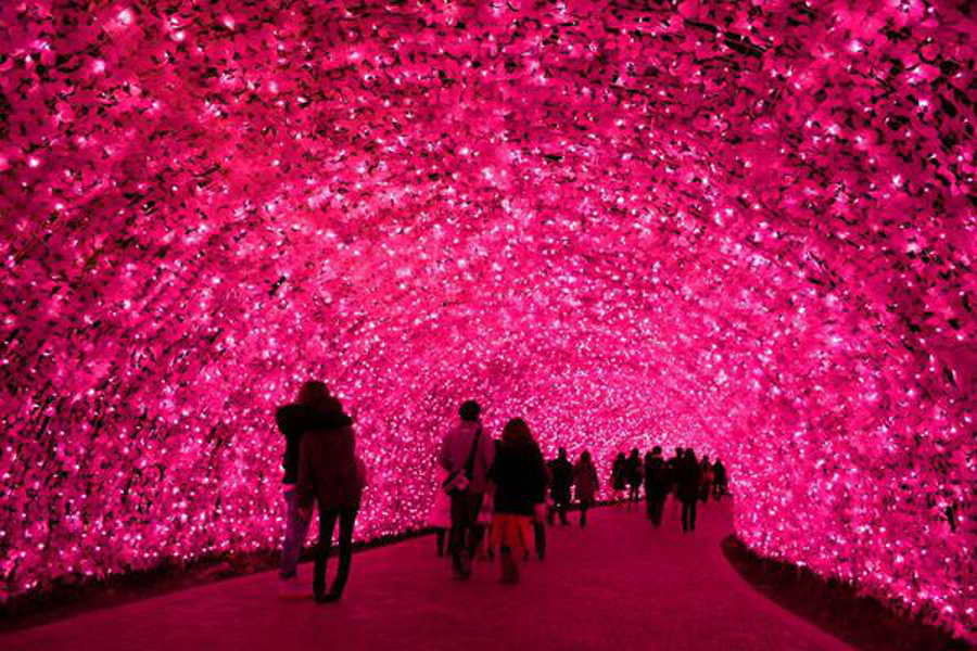 Japan's Glimmering Tunnel of Lights — Spectacular Winter Illuminations 6
