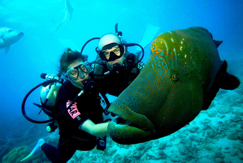 5. Scuba Diving 1