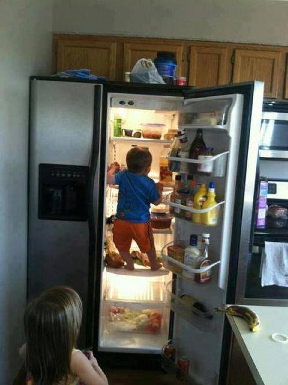Фото приколы на холодильник 8