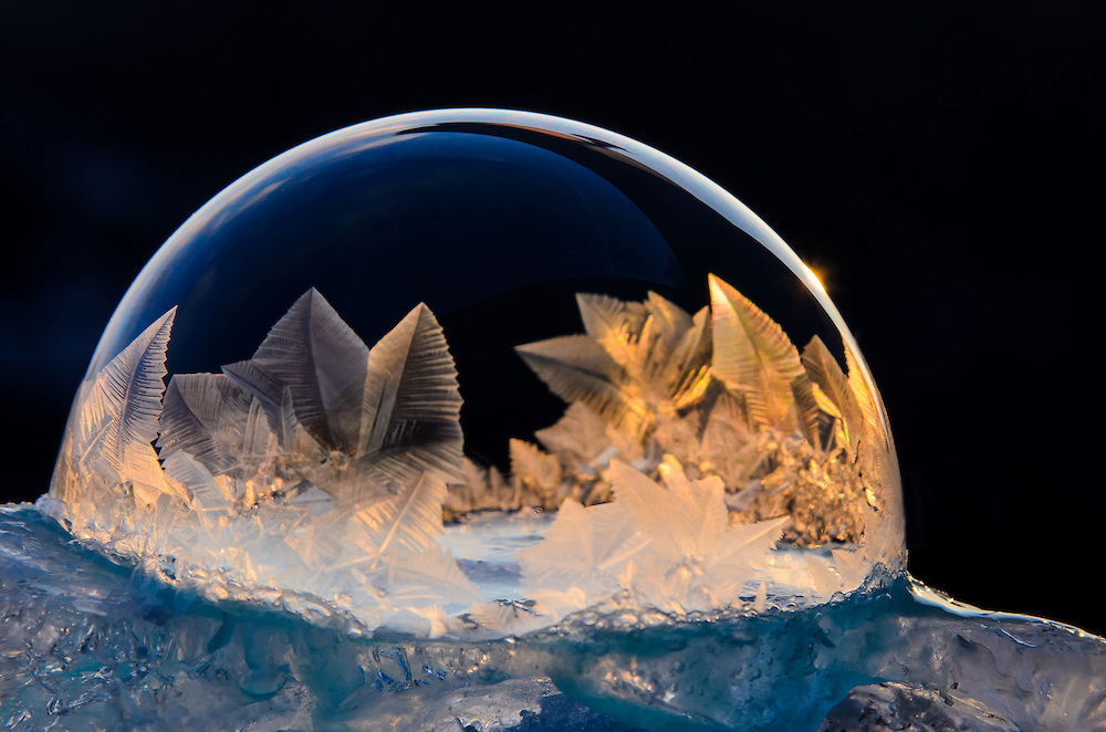 Mysterious Frozen Bubbles By Hope Carter 5
