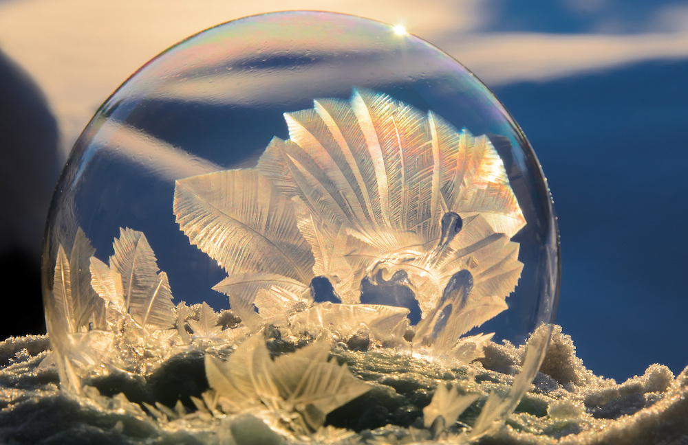 Mysterious Frozen Bubbles By Hope Carter 8