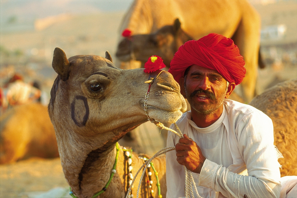 The Pushkar Camel Fair In Rajasthan, India 5