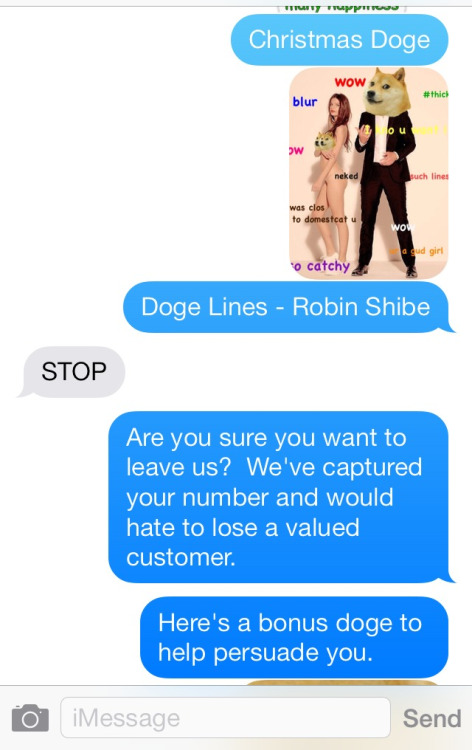 20 Best Responses To Wrong Number Texts 22