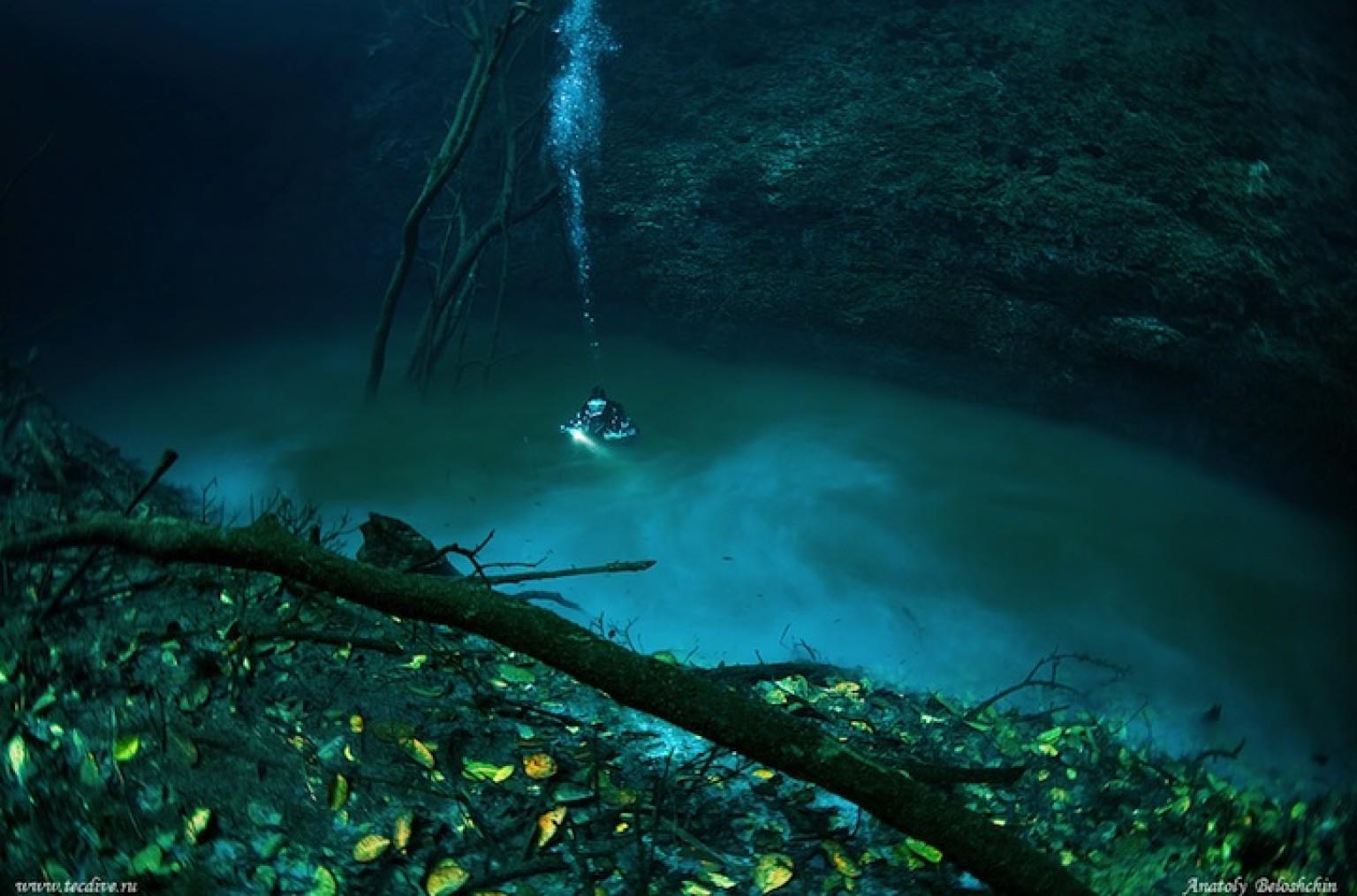 9 Bizarre Underwater Discoveries 11