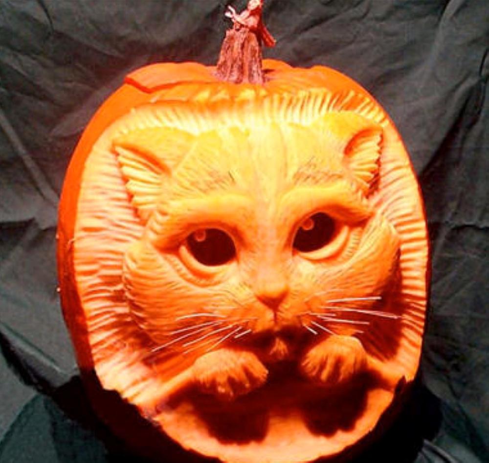 Cool Pumpkin Faces Mindblowing Halloween Pumpkin Carvings Brain Berries