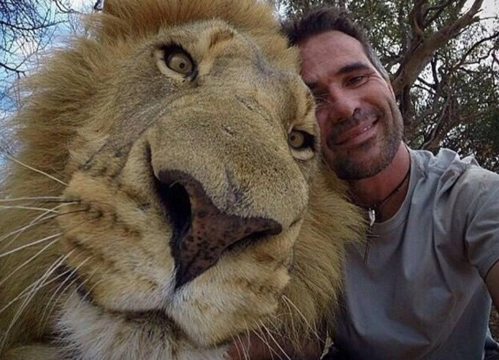 Snapping Selfies with Wild Animals Is a New Trend 2
