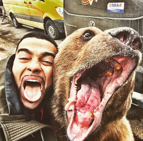 Snapping Selfies with Wild Animals Is a New Trend 6