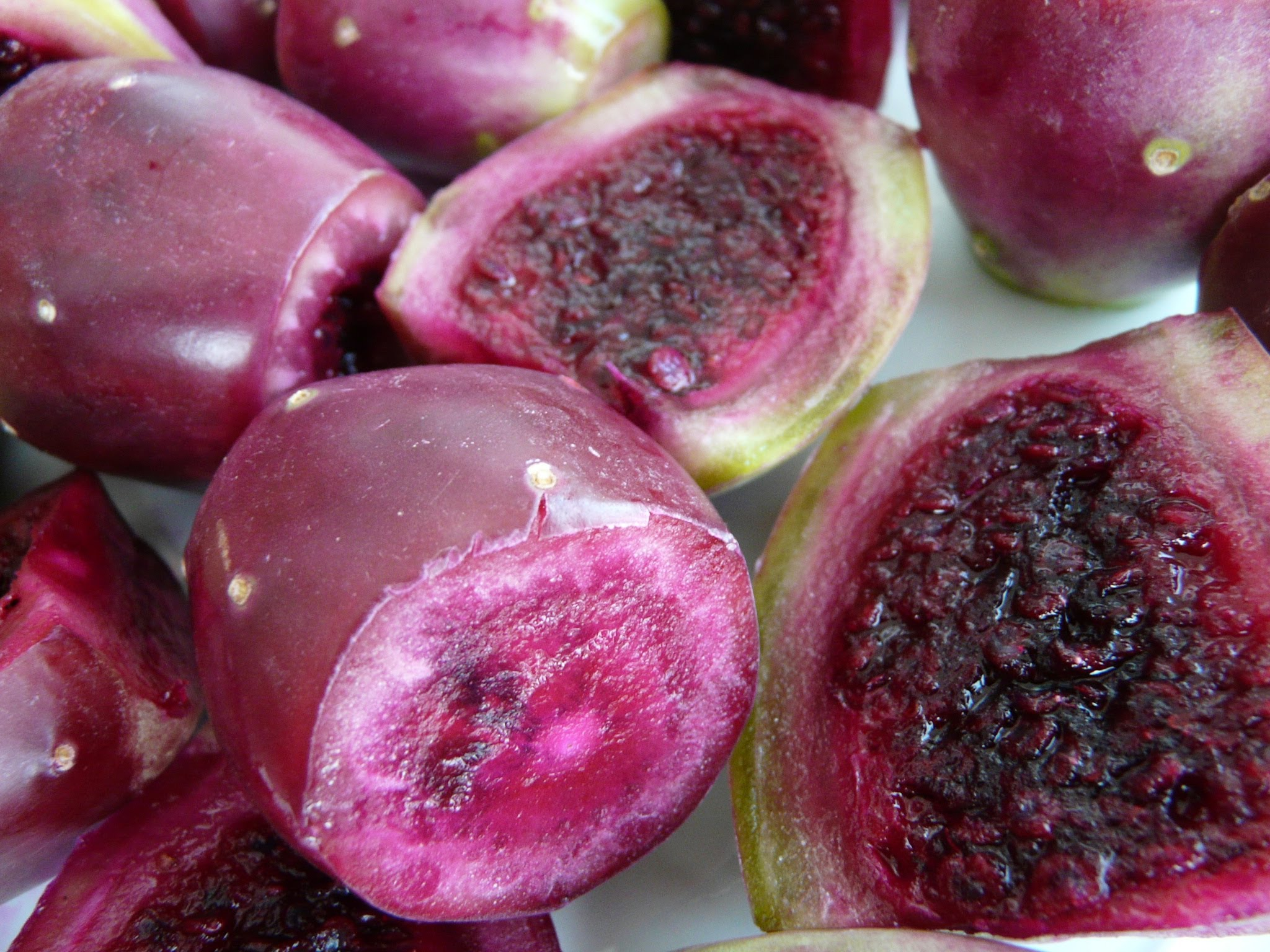 10. Prickly pear cactus fruits 2
