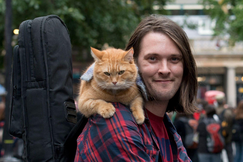 Street Cat Bob 5