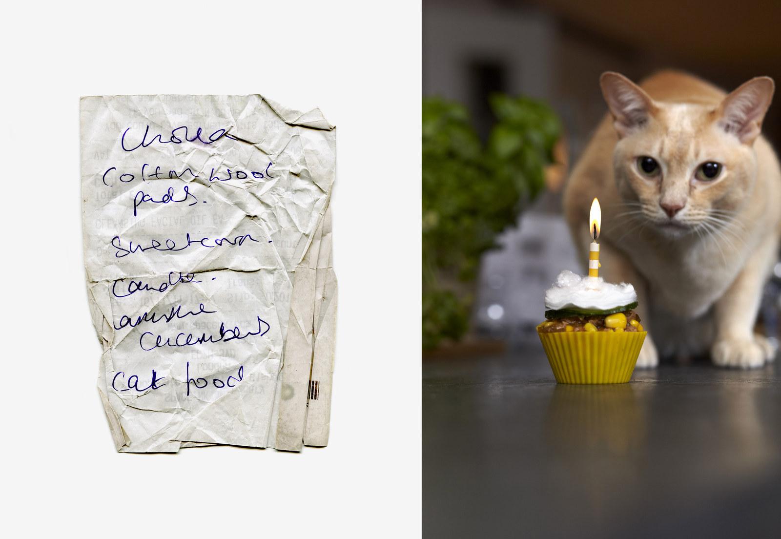 thomas_lakeman_shopping_list_cookbook_03