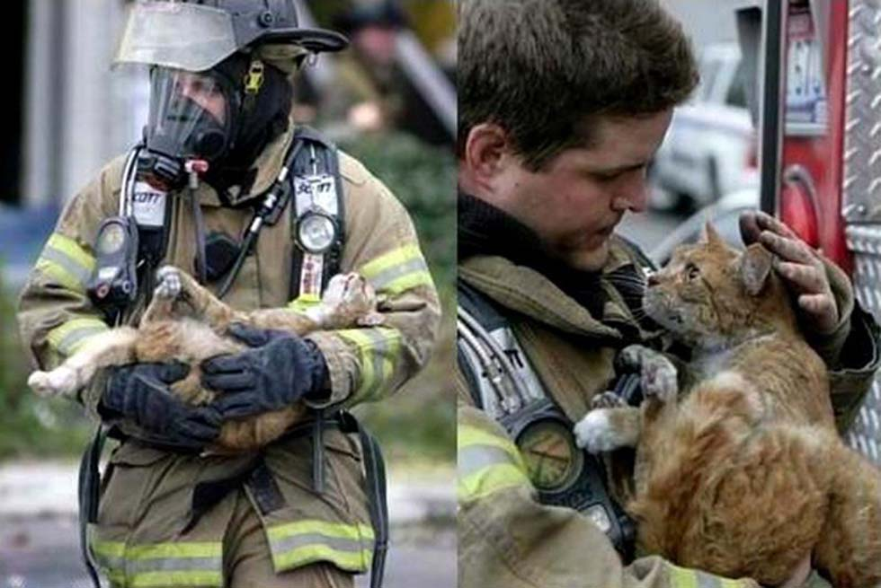 amazing_photos_that_will_warm_your_heart_and_restore_your_faith_in_humanity_01