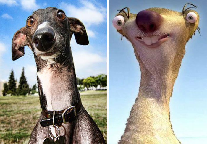 real­life-cartoon-lookalikes-09