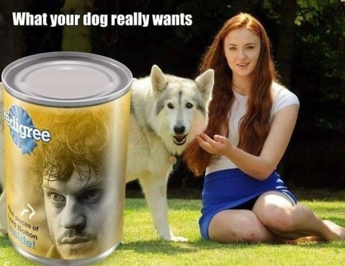 best-of-game-of-thrones-season-6-memes-17