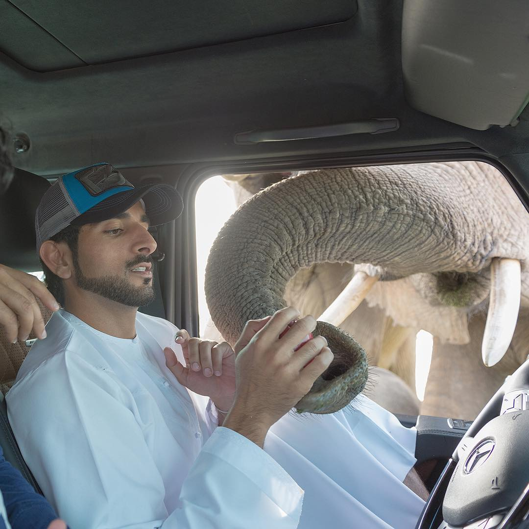 meet-the-real­life-aladdin-crown-prince-of-dubai-sheikh-hamdan-34