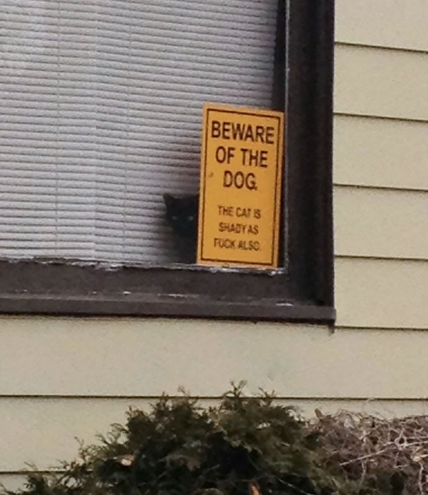 beware-of-the-dog-01