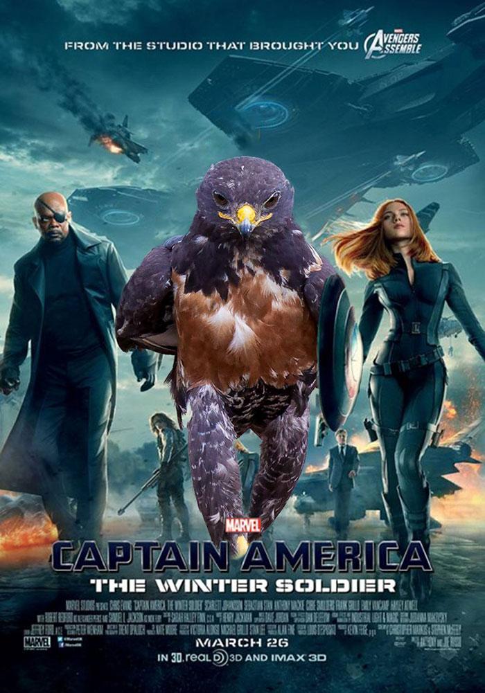 this-hawk-photoshop-battle-is-epic-10