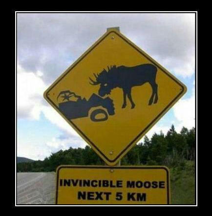 funny-road-signs (13)