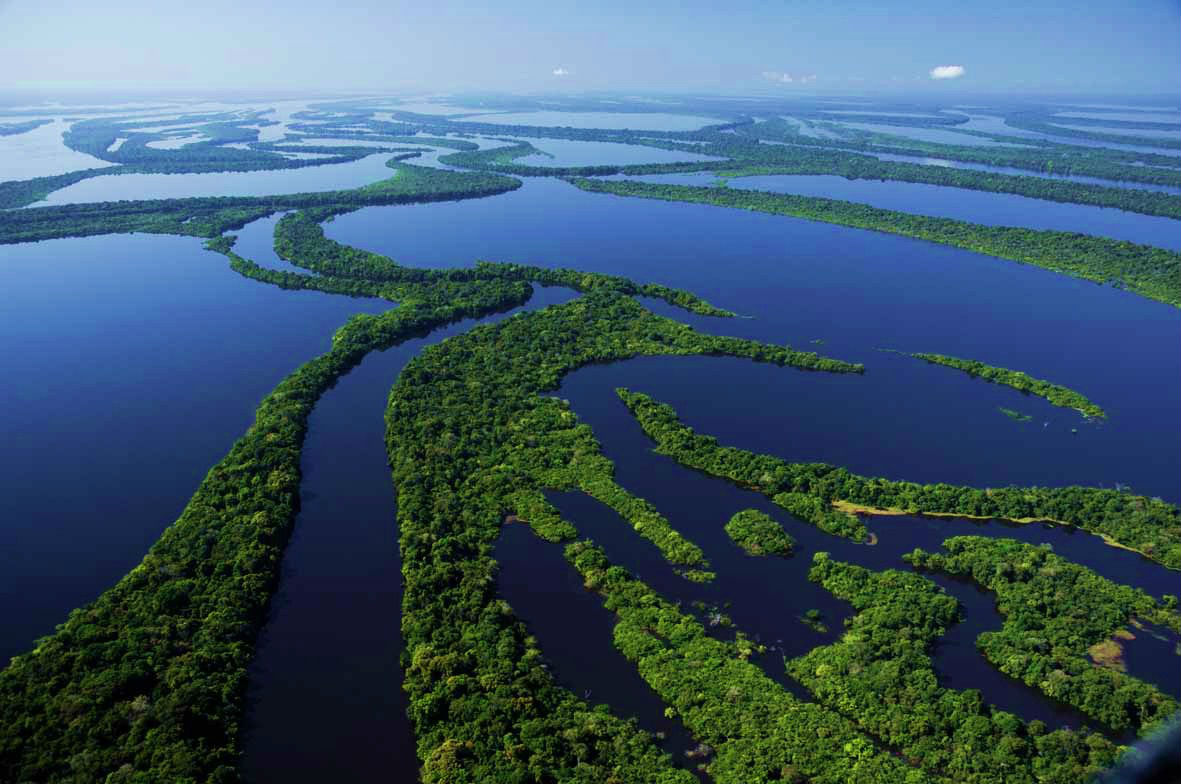 4-Anavilhanas National Park near the Amazon River, Brazil