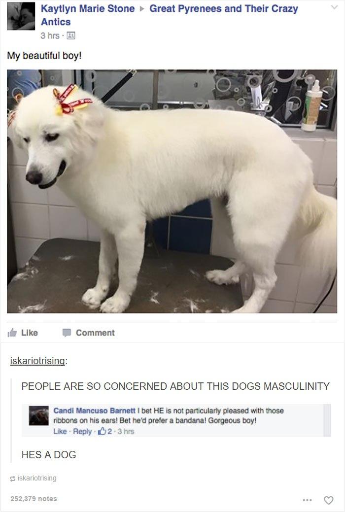 funny-masculinity- (7)
