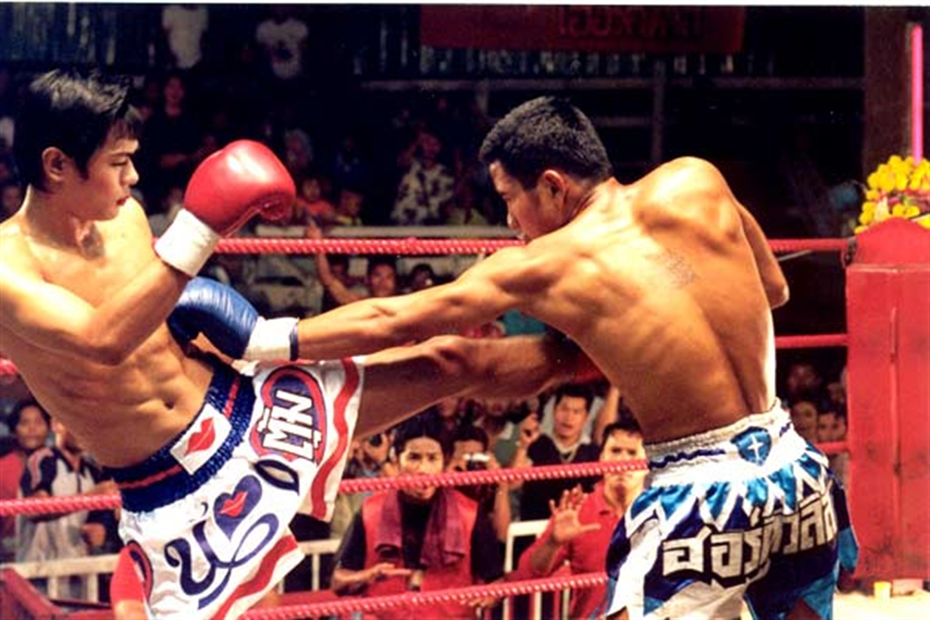 top-10-sports-movies-08-beautiful-boxer