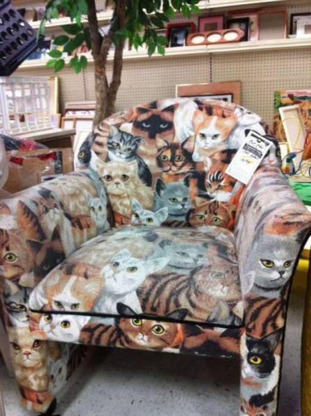 weird-thrift-store-items-5