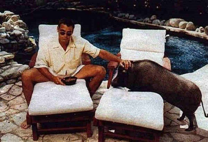 This image has an empty alt attribute; its file name is Top-10-most-unusual-celebrity-pets-weve-ever-seen5.jpg
