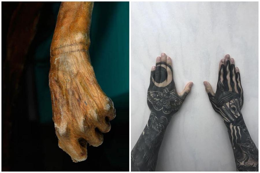 As tatuagens são mais antigas do que você imagina | 9 fatos surpreendentes sobre tatuagens que você provavelmente não sabia | Brain Berries