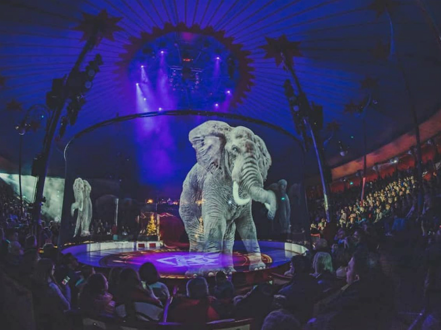 German Circus Replaces Real Animals With Holograms | ZestRadar