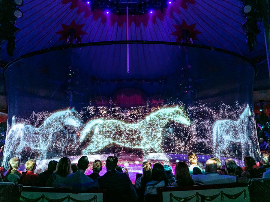 German Circus Replaces Real Animals With Holograms | ZestRadar
