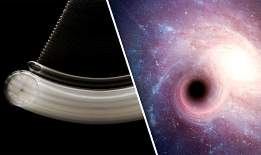 What is inside a black hole? | Brain Berries