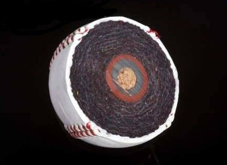 14 Incredibly Cool Pictures Of Unusual Objects Cut In Half #7 | Brain Berries