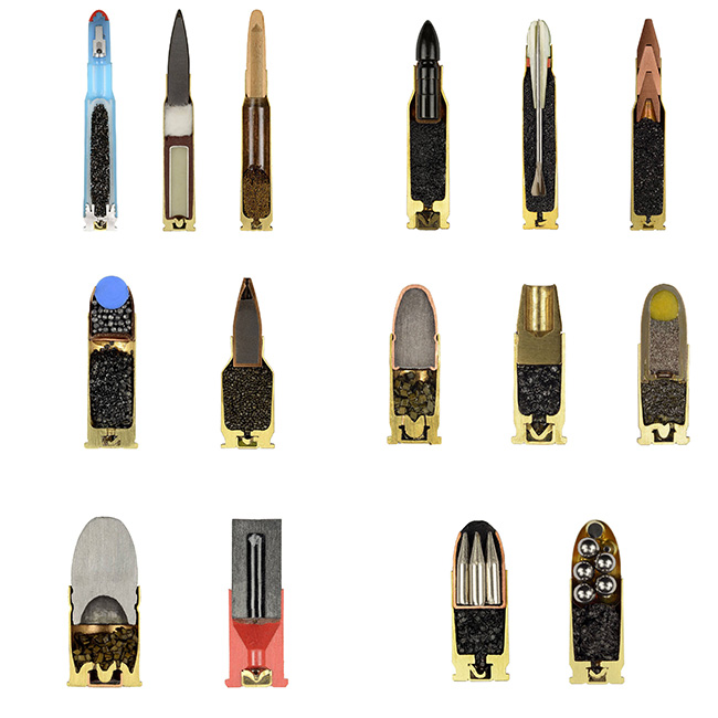 14 Incredibly Cool Pictures Of Unusual Objects Cut In Half #3 | Brain Berries