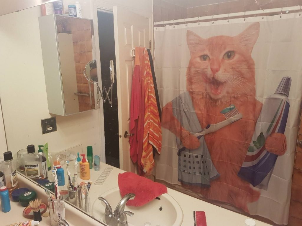 28 Geeky and Hilarious Shower Curtains For Adult #19 | Brain Berries