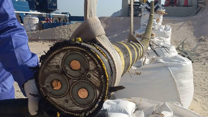 14 Incredibly Cool Pictures Of Unusual Objects Cut In Half #9 | Brain Berries