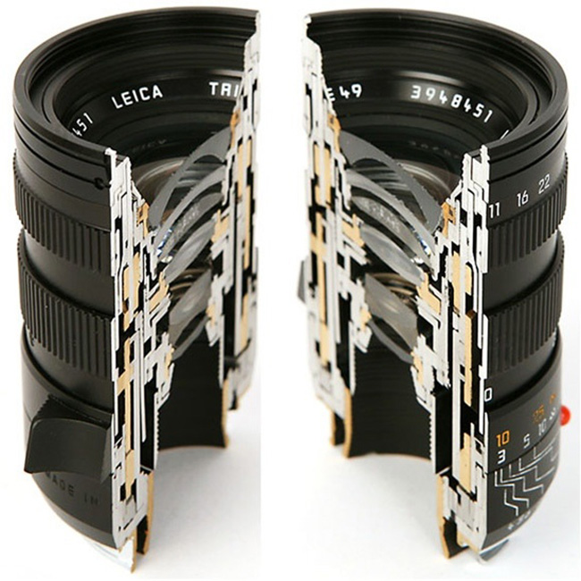 14 Incredibly Cool Pictures Of Unusual Objects Cut In Half #4 | Brain Berries
