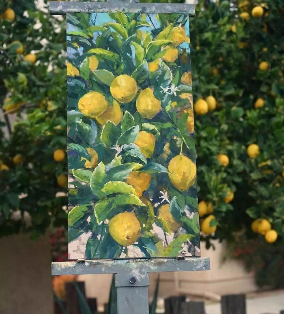 Аарон Шерр (Aaron Schuerr) #9 | Невероятное сочетание искусства и природы | Brain Berries