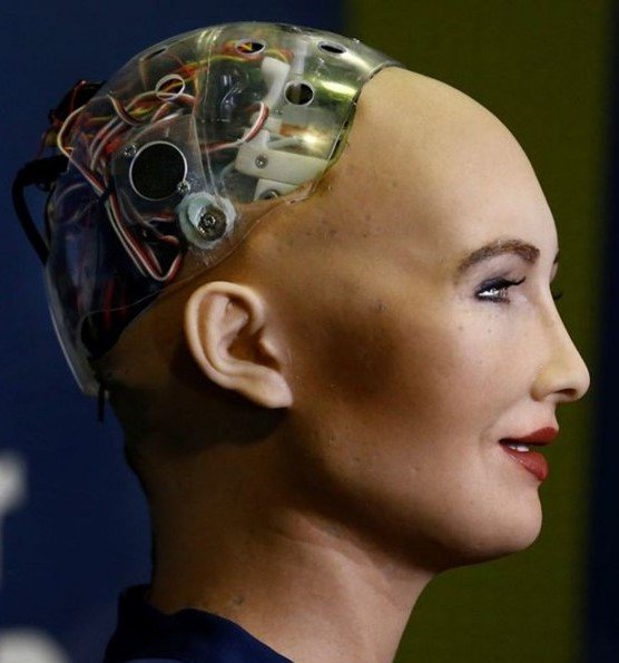 Sophia | 8 Most Amazing Advanced Robots That Will Change Our World | Brain Berries