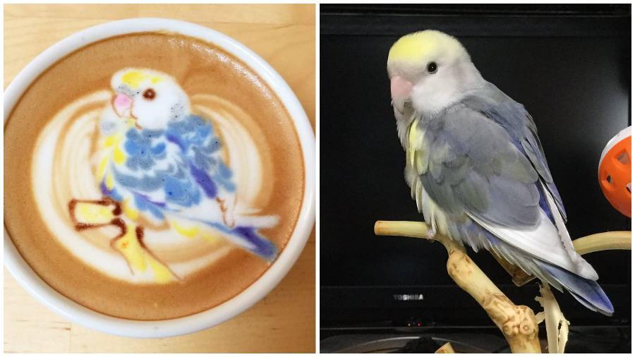 Bird Latte Art #11 | Zestradar