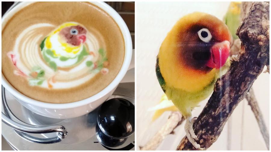 Bird Latte Art #3 | Zestradar