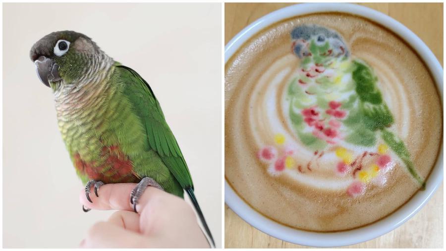 Bird Latte Art #4| Zestradar