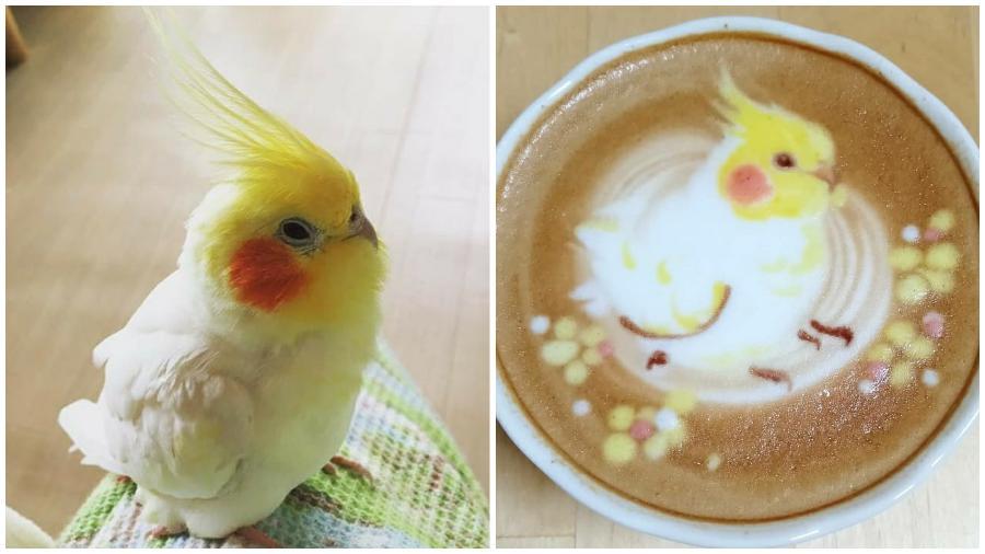Bird Latte Art #5 | Zestradar
