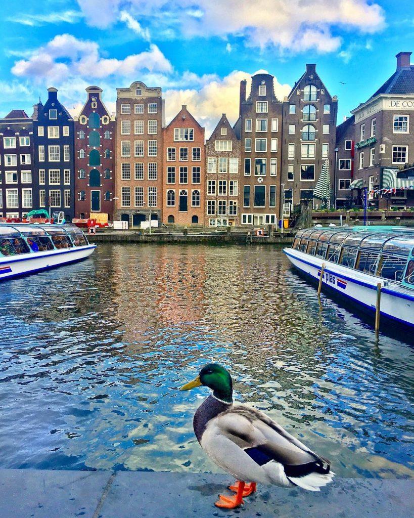 Амстердам, Нидерланды | 10 красивейших мест в Европе, о которых почти ничего не знают туристы | Brain Berries
