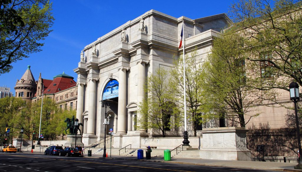 American Museum of Natural History (New York) | 6 Best Natural History Museums In The World | Brain Berries