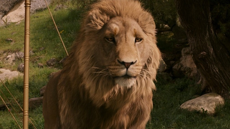 Aslan | 6 Most Overpowered Live Action Disney Characters | Brain Berries